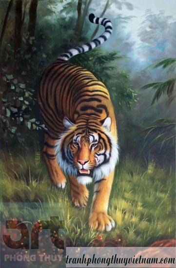 tranh con hổ đẹp