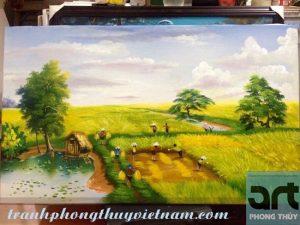 tranh đồng quê cánh đồng mùa gặt