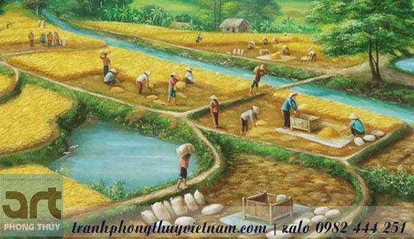 bác nông dân đang gặt lúa