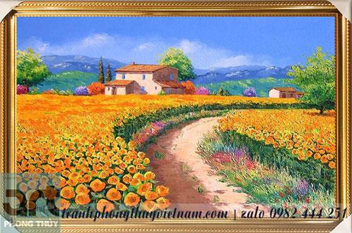 ngôi nhà bên cánh đồng hoa