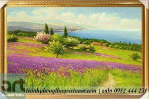 phong cảnh cánh đồng hoa oải hương