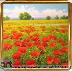 tranh phong cảnh cánh đồng hoa poppy