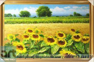 tranh phong cảnh vẽ cánh đồng hoa hướng dương