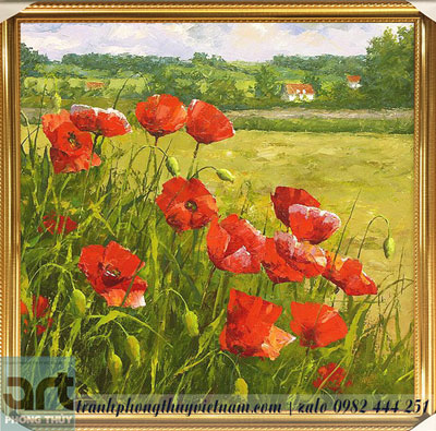 tranh vẽ hoa poppy