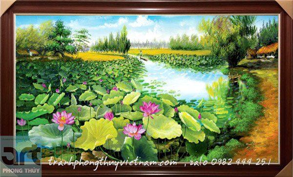 phong cảnh đầm hoa sen