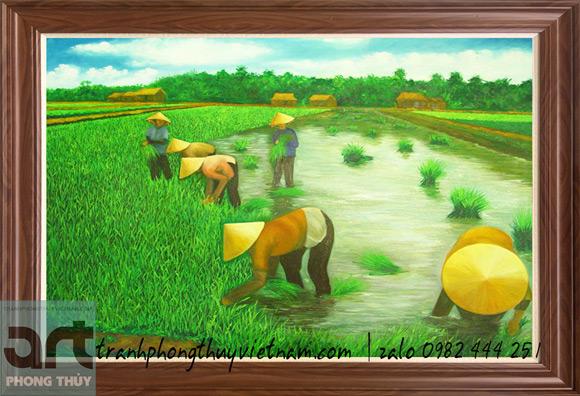 tranh đồng quê mùa cấy lúa