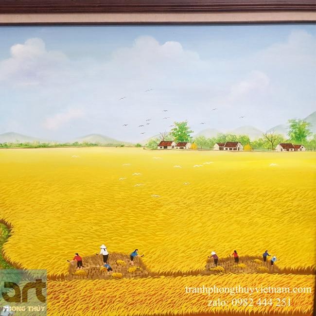 cánh đồng lúa thẳng cánh cò bay
