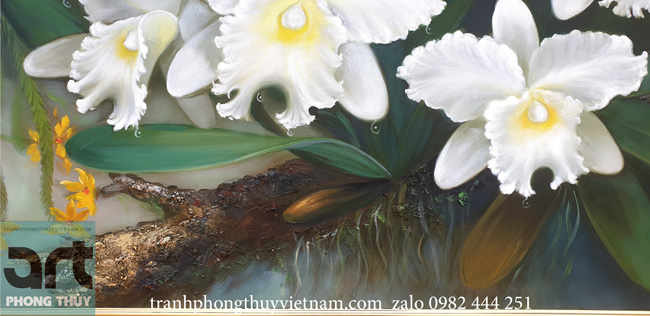 Tranh sơn dầu hoa lan trắng chi tiết