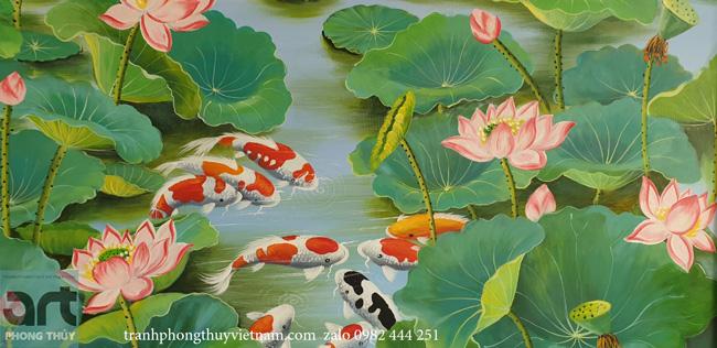 cửu ngư quần tụ trong đầm hoa sen đẹp nhất