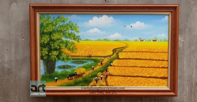 Phong cảnh đồng quê cánh đồng lúa chín vàng